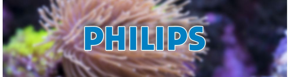 Philipps
